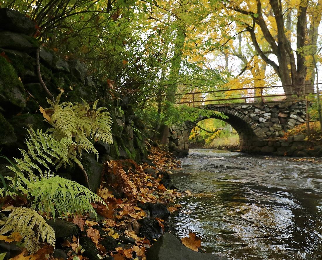 Lillån bro Vessigebro IMG_1740.JPG